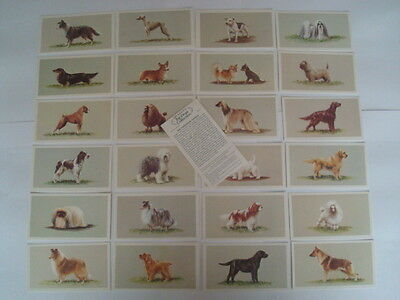 Full Set Grandee (John Player) Cigarette Cards Top Dogs Collection Excellent