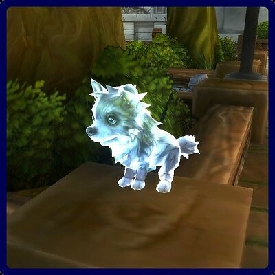 Frostwolf Ghostpup WoW World of Warcraft L25 rare quality (blue) pet EU realms