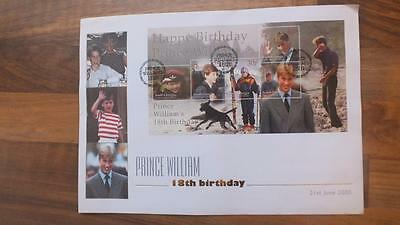 2000 SOUTH GEORGIA PRINCE WILLIAM'S 18th BIRTH DAY MS   HUGE FDC
