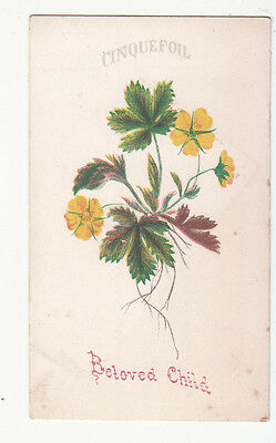 Beloved Child Cinquefoil Yellow Flowers Green Leaves Vict Card c 1880s