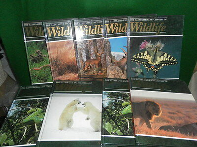 SET OF 8 The ILLUSTRATED ENCYCLOPEDIA OF WIFELIFE