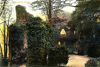 MONMOUTHSHIRE - 1920s Postcard of Abergavenny Castle