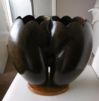 Very Rare, Collectable, Vintage Seychelles Double Coco De-Mer Nut Seed Ornament