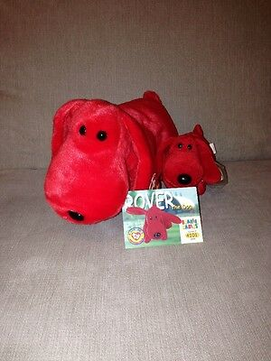 Beanie Baby And Buddy - Rover - Retired With Tag And Protector 90s