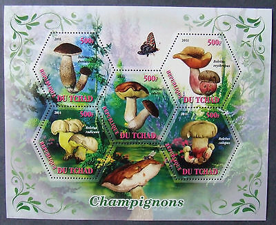 Tchad 2011 - Mushrooms, 1 M/Sh, MNH, EP 004