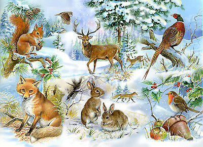 The House Of Puzzles - 250 BIG PIECE JIGSAW PUZZLE - Midwinter Big Pieces
