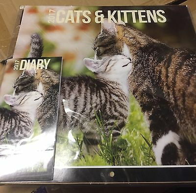 Joblot calendars 2017 9 Assorted Of Cats And Dogs
