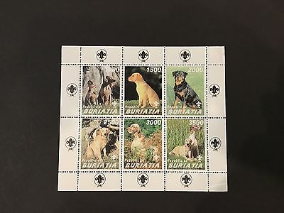 Dogs- mnh stamp sheet - Scouts -