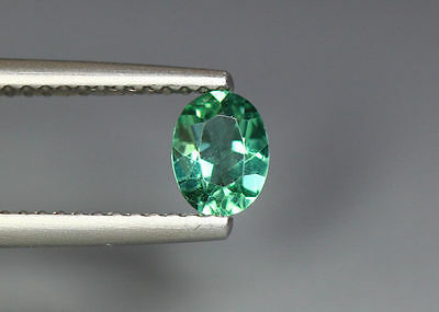 0.40 Cts_Gem Miracle Collection_100 % Natural Neon Green Apatite_Brazil