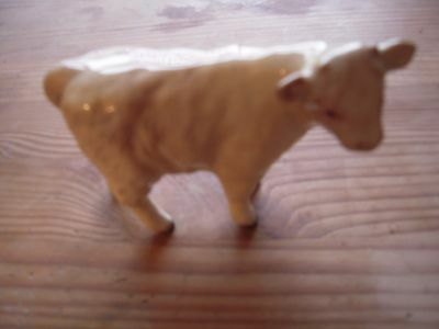 Beswick Charolais Calf 4 inches long & 3.5 in Tall Great Condition. Vintage.