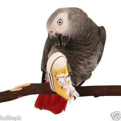 Parrot Bird Foot Toy Colourful Trainer Boot Sneaker African Grey Etc