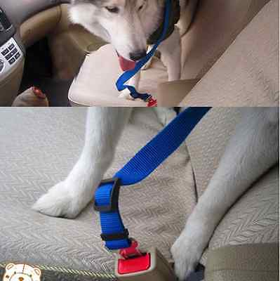 Save Your Dog On The Road New Car Safety Pet Best Product 2017