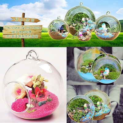 8cm Clear Hanging Glass Flowers Plant Vase Stand Holder Terrarium Container JL