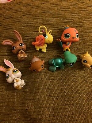 Littlest Pet Shop Bundle of Pets - (u)