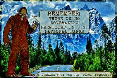 *vintage Big Foot Sasquatch Sign* Mountains Forest Park Service U.s. National