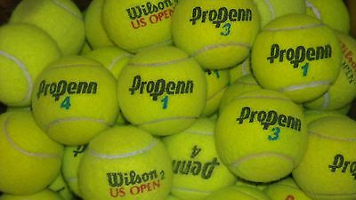 100 Used Tennis Balls, Dogs, Chairs, Toys, Baseball, etc...