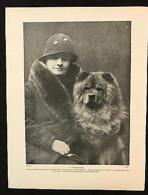 1934 Dog Print / Bookplate - CHOW, Lady Faudel-Phillips & one of her dogs