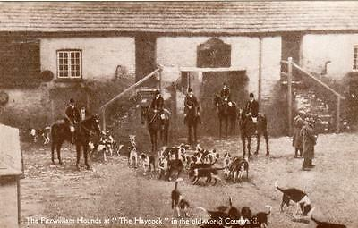 Fitzwilliam Hounds Hunting Haycock Hotel Wansford Nr Stamford Peterborough RP pc