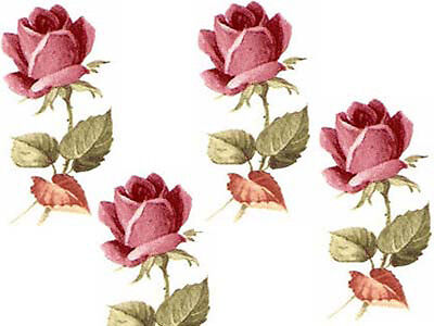ToNs OF TiNY LonG STeMmeD RoSeS ShaBby WaTerSLiDe DeCALs