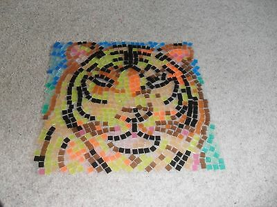 Hand made mosaic sun catcher picture (Tiger)