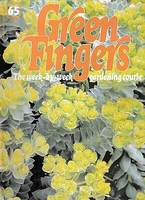 Green Fingers 65. Gardening Magazine. Plants For Chalky Soil, Home Hydroponics,