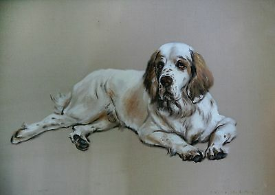 Clumber Spaniel Pastel by Ronald Wong Framed