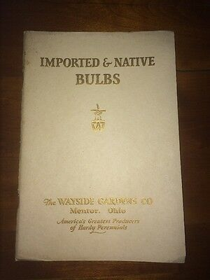 1927 Wayside Gardens Co. Imported and Native Bulbs Catalog