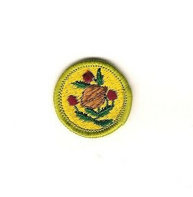 Boy Scout Patch Fruit and Nut Growing Merit Badge cloth back 1961-1971