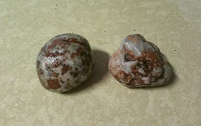 2 Unusual Pudding Stones ~Northern Mich.