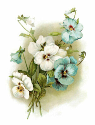 Vintage Image Shabby Victorian Blue and White Pansies Waterslide Decals FL275