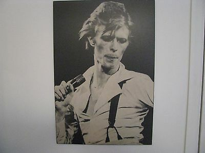 David Bowie Laminated poster