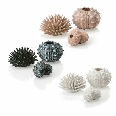 Oase Biorb Ornament Sea Urchins (3) Decoration Aquarium Fish Tank Display Shells