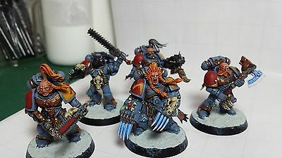 Space Wolves Warhammer 40k x 5
