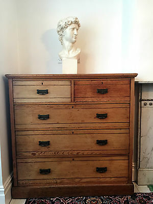 Stunning Rare Victorian Antique James Shoolbred & Co Chest of Drawers Golden Oak