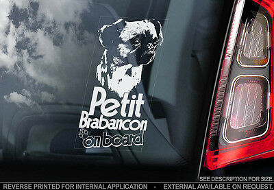 Petit Brabancon - Car Window Sticker - Dog Sign -V01