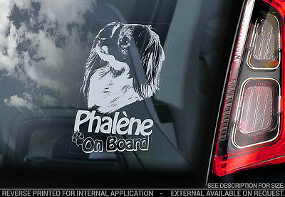 Phalène - Car Window Sticker - Phalene Papillion Dog on Board Sign Gift Art- V02