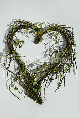 Ready-Made Heart Shaped Wild Willow Wreath 34cm