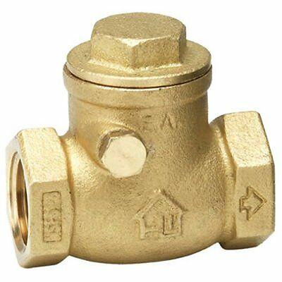 Homewerks 240-2-1-1 No-Lead Swing Check Valve, Female Thread x Female Thread, Br