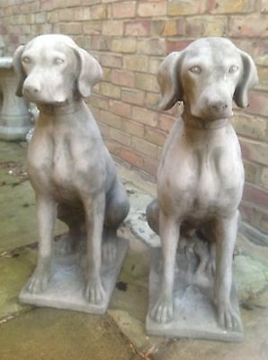 Pair Of Large Pointer Guard Dogs - Cast Stone Garden Ornament Statues
