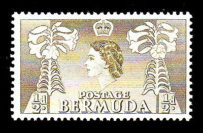 Bermuda # 143: 1/2 Penny, Olive Green, Easter Lillies . Mint, Fine, NH.