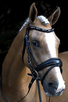 New Black Leather English Horse Bridle Bling Browband With Pearls From Swarovski