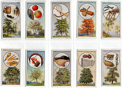 cigarette cards british trees & their uses 1927 full set