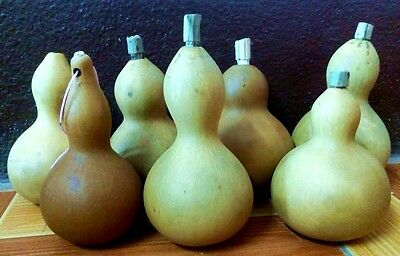 2 pcs 6 inch Mini Dried Bottle Gourd for crafts beautyful paint gift hanging