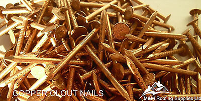 COPPER CLOUT ROOFING NAILS/TREE STUMP KILLER 1KG PACKS 25mm,30mm,38mm,45mm&50mm