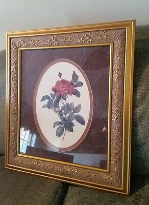 "■PRETTY■ LARGE 22""x24"" SINGLE ROSE ORNATE GOLD FRAMED/MATTED WALL ART PICTURE"