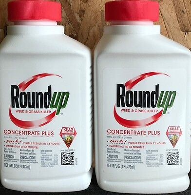 Roundup Weed & Grass Killer Concentrate Plus - 2 16-ounce bottles (32-ounces)