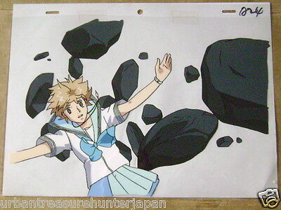 The Vision Of Escaflowne Movie Hitomi Anime Production Cel