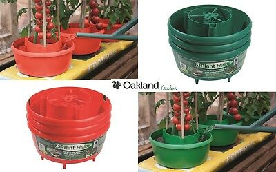 Plant Halos Red Green Watering Halo Rings Tomatoes Grow Bag Tray Cane Support