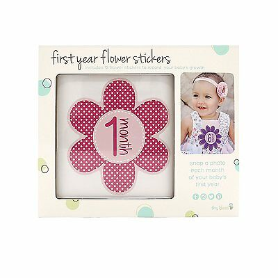 Tiny Ideas First Year Monthly Milestone Flowers Photo Sharing Baby Belly 1-12