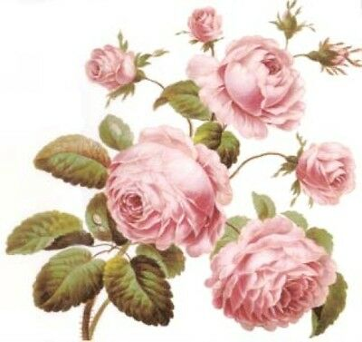 BesT ShaBby PinK CaBbaGe RoSeS WaTerSLiDe DeCALs *FuRNiTuRe SiZe*